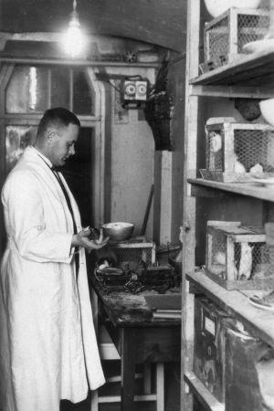 Ragnar Granit med sin forskning år 1928.