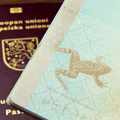 Finländskt pass
