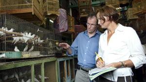 En man i ljusblå skjorta och en kvinna i vit skjorta tittar på fågkar i bur på en marknad i Jakarta.