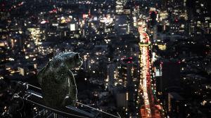 Sammakko istumassa öisen suurkaupungin yllä.