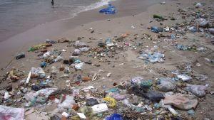 Sandstrand i Nha Trang, Vietnam, full med plastskräp. Ett vattenreningsverk planeras i Nha Trang, men tills vidare finns inget avloppssystem utan allt skräp förs ut i havet och flyter i land på annat ställe.