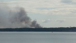 Rökbildning från skogsbrand i Syndalen i Hangö.