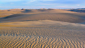 Tuulen tekemiä aaltoja hiekassa Saharassa.