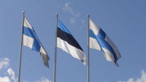 Finlands och Estlands flaggor