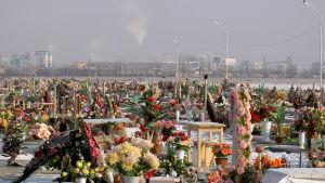 Ett fält i utlkanten av Beslan blev begravningsplats för offren i gisslandramat.