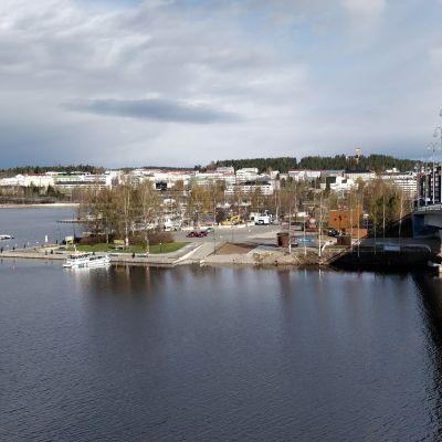 Jyväskylän sataman kärjen alue kuvattuna Kuokkalan sillalta.
