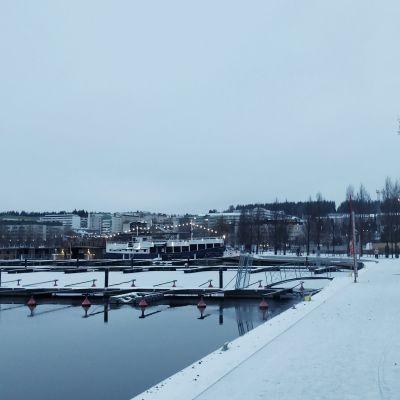 Jyväskylän Lutakon satama marraskuisena aamuna.