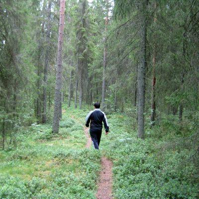 En man som går på en stig i skogen