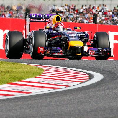 Sebastian Vettel, Red Bull, 2014.