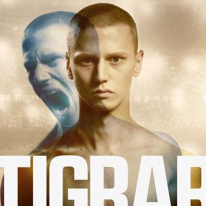 Planschen till filmen Tigrar. Huvudpersonen tittar rakt in i kameran. Som en skugga ser man honom öppna munnen till ett vrål.