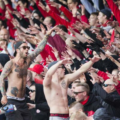 HIFK:s fotbollsfans under HJK-derbyt, maj 2016.