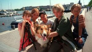 Viisi lasta ja koira katsovat satamaan. Kesäinen päivä satamassa.