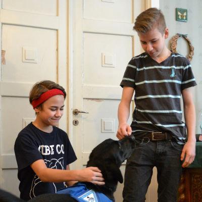 Två bröder med diabetes tillsammans med sin hypohund Nalle