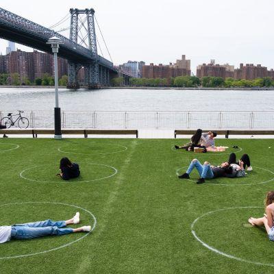 Ihmisiä istuu puistossa nurmikkoon maalatuissa rinkuloissa
