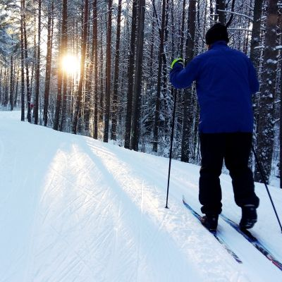 Skidare skidar i skogen