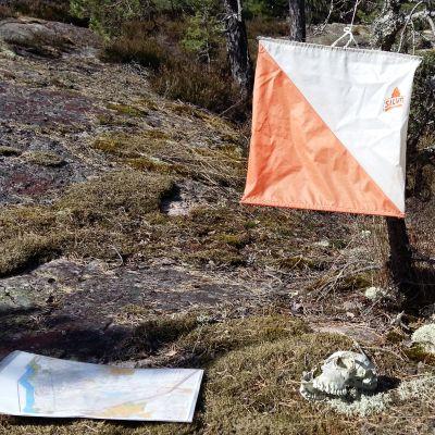 Orienteringskontroll och orienteringskarta i skogen.