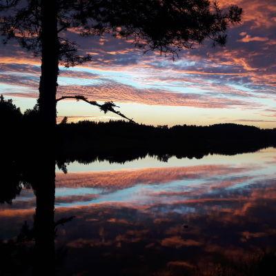Naturbild från Bromarf. Soluppgång.