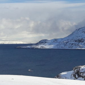 Blått isfritt hav, snäklädda fjäll som lyses upp av solen.