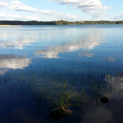 Klart vatten i Littois träsk en månad efter den kemikaliska reningen.