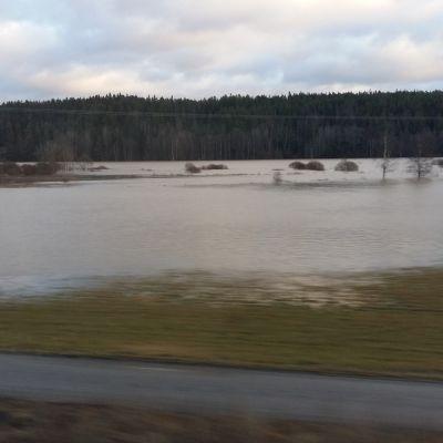 Uskelanjoki tulvii Perniössä