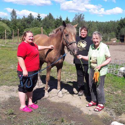 Finnhästen Salasana och hennes människor