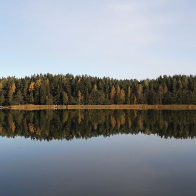 Skog speglas i vatten vid Norrlångviken, Kimitoön.