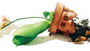 Spike Jonze: Adaptation - minun tarinani.