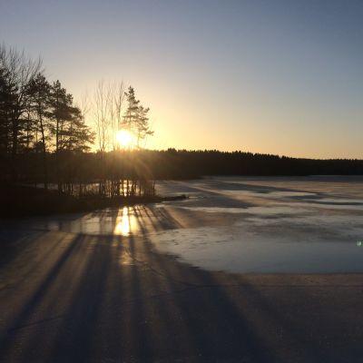 Aurinko paistaa matalalta jäätyneen järven yli tammikuussa