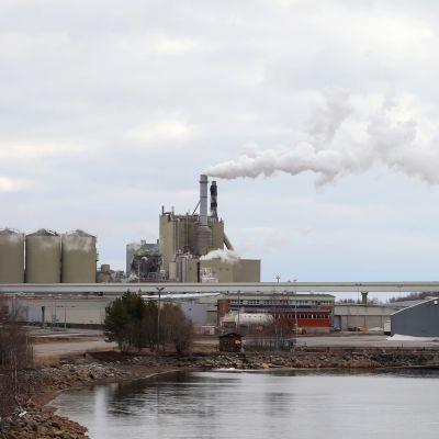 Stora Enson Veitsiluodon tehdas. Etualalla näkyy vesialue, rannassa varastoja ja kuvan keskellä sellutehtaan rakennuksia.