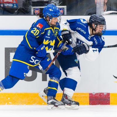 Fanny Rask on yksi ruotsalaiskiekkoilijoista, jotka voivat pelata ammatikseen. Raskin pelaamista rahoittaa NHL-seura Minnesota Wildiä edustava veli Victor Rask.