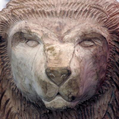 Aslan -leijona, Narnia-sarjan hahmo, veistetty tammesta, kuvattu Walt Disney World' ssä.