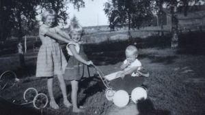 Lena, Stina och Tomas Ekblad på gården i Solf 1959. Lillasyster Ylva Ekblad föds 1961.