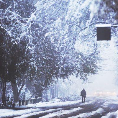En man går längs en snötäckt gata med fallna träd i Chiles huvudstad Santiago 15.7.2017