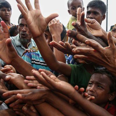 Flyktingar tillhörande rohingyafolket ber om mat i ett flyktingläger vid gränsen mellan Burma och Bangladesh.