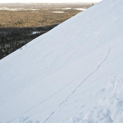 Skidbacke i Lappland