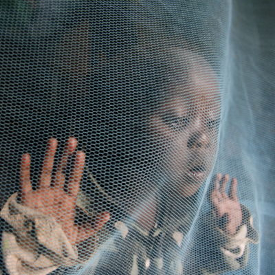En liten pojke tittar ut genom ett myggnät i Afrika.