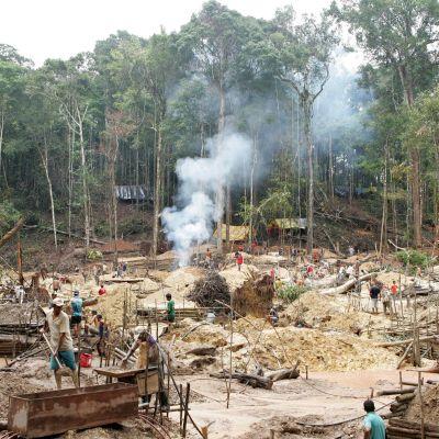 Guldgrävare och skogsskövling i Amazonas, Brasilien. 2007.