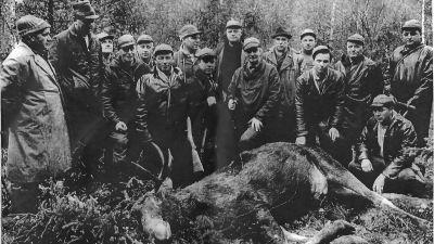 Gruppbild med Östersundom jaktförening från 1960-talet.