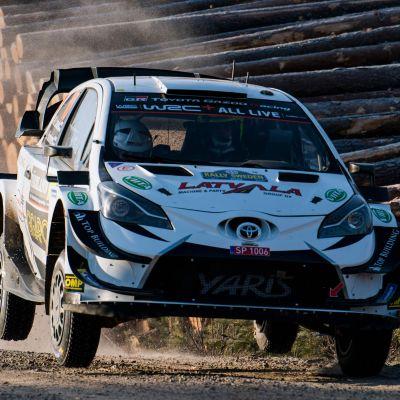 Jari-Matti Latvala kör bredvid en stock ohch Sveriges flagga.