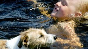 Koira ja lapsi uimassa