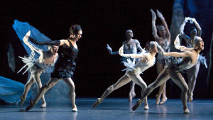 Kuva J-C Maillot'n baletista Lampi