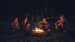 Fyra glada männsikor sitter och musicerar runt en lägereld i sommarnatten.