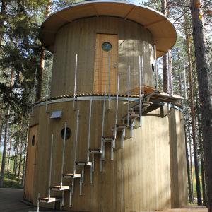 I världsunika Tree hotel i Harads norr om Boden finns det naturligtvis en ångande bastu uppe i ett träd
