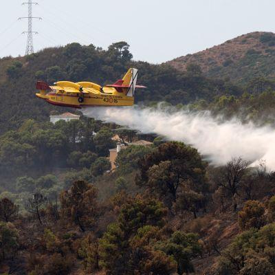 Flygplan som vattenbombar ett område i Spanien.