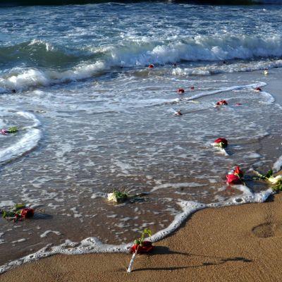 Kukkia meren rannassa EgyptAir-onnettomuuden uhrien muistolle.