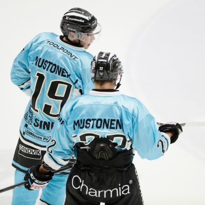 Joel Mustonen ja Aleksi Mustonen, Pelicans