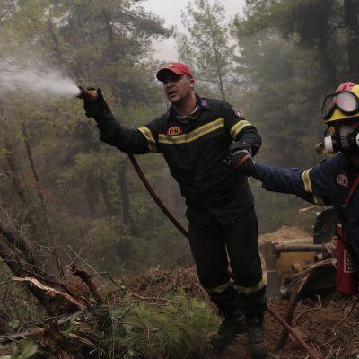 Ulkomaiset pelastajat auttavat Kreikan sammutustöissä