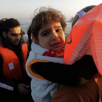 Flyktingar på grekiska önLlesbos i november 2015