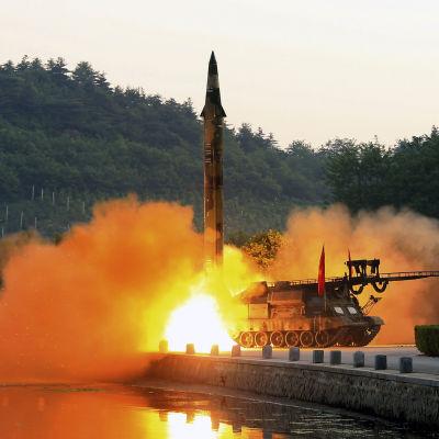 Ett odaterat nordkoreanskt fotografi av en träffsäkrare typ av kortdistansmissiler som kan avfyras från rörliga avfyringsramper