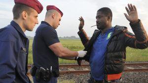 En flykting grips av polisen nära den ungersk-serbiska gränsen i maj 2015